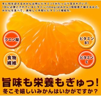 【2020年11月下旬以降出荷】和歌山県産完熟有田みかん 10kg/赤秀 (2Lの大玉サイズ)
