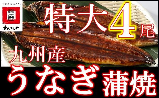 FY04-23-UG【丑の日配達指定】九州産うなぎ蒲焼特大4尾(1尾あたり200~235g)