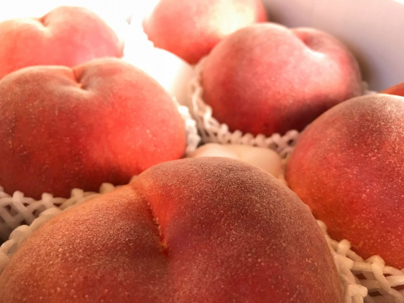 【フレッシュ果実&セミドライフルーツシリーズ】山梨県産白桃大玉2kg(6~7玉)&セミドライ