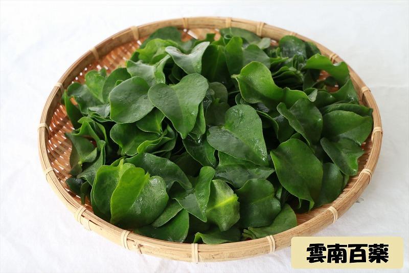 琉球野菜4種盛りと高級宮古牛(800g)のしゃぶしゃぶセット