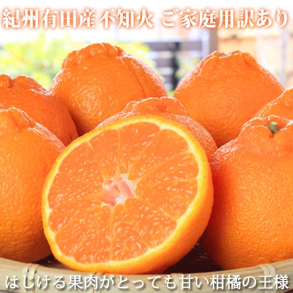 【ご家庭用訳有り】紀州有田産不知火(しらぬひ)約8.5kg
