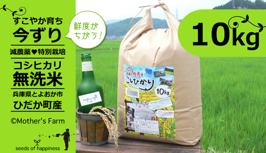 【令和元年産】【今ずり・無洗米】兵庫県但馬産コシヒカリ(白米)10kg