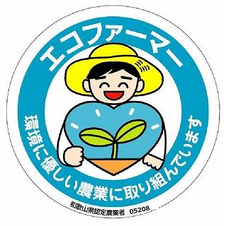 <令和2年発送>【梅干用】紀州南高梅(2L-10kg)