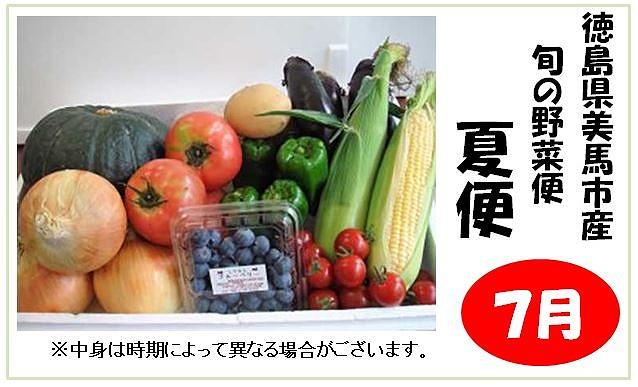 <お届けは7月より>旬の野菜便(夏便)