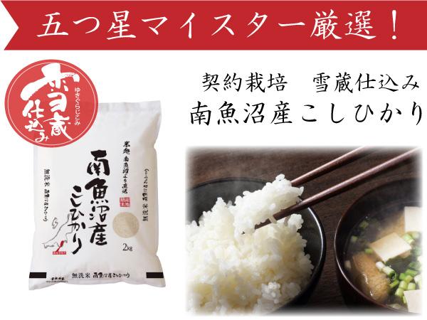 【頒布会】(8㎏×全6回)南魚沼産こしひかり 雪蔵貯蔵米