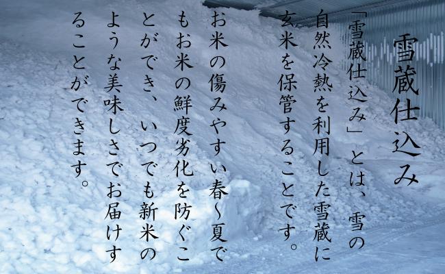【頒布会】(5㎏×4全3回)契約栽培雪蔵貯蔵米南魚沼産こしひかり