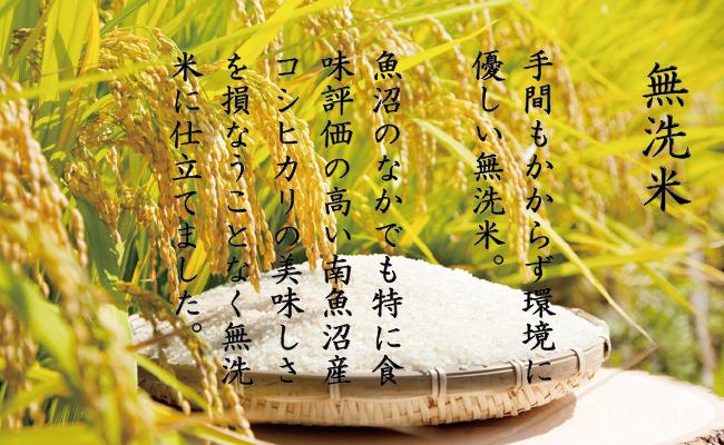 【頒布会】(5kg×全3回)無洗米 南魚沼産こしひかり