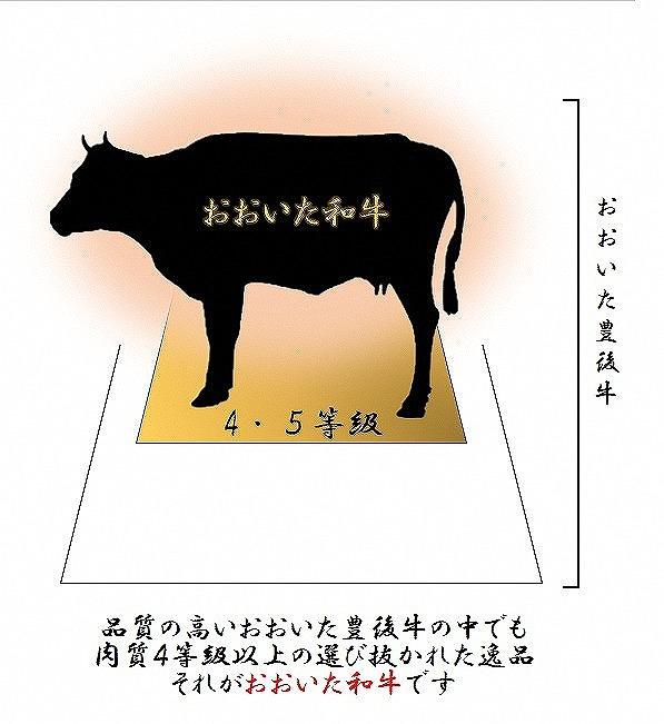 【事業者支援対象謝礼品】おおいた和牛4等級以上ヒレステーキ約100g×4枚(合計400g以上) 低温熟成製法による旨味の凝縮