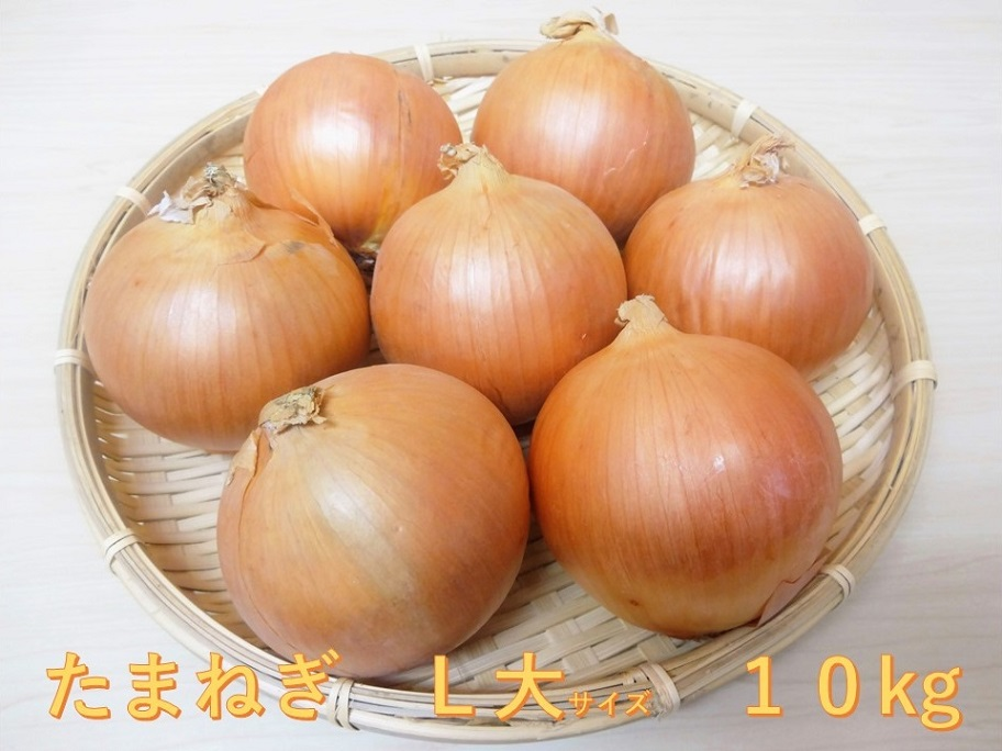 2020年10月上旬より発送【環境に優しくおいしい!!】北海道長沼産玉ねぎL大サイズ10kg