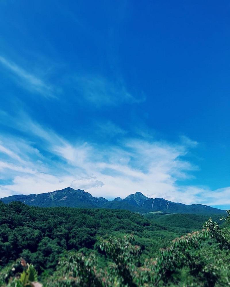 八ヶ岳高原野菜セット(北杜市産直送)定期便(3回)