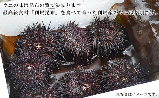 予約開始★利尻島産塩水生うにエゾバフンウニ3パック7月発送分【福士水産】