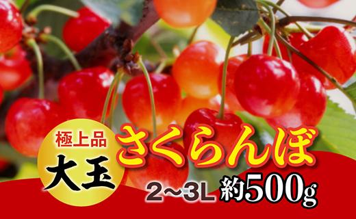 【令和3年 先行予約】極上品大玉・さくらんぼ(1段並べ2~3L約500g)