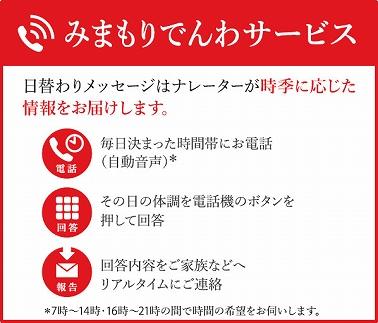 みまもりでんわサービス【携帯電話】(3か月間)