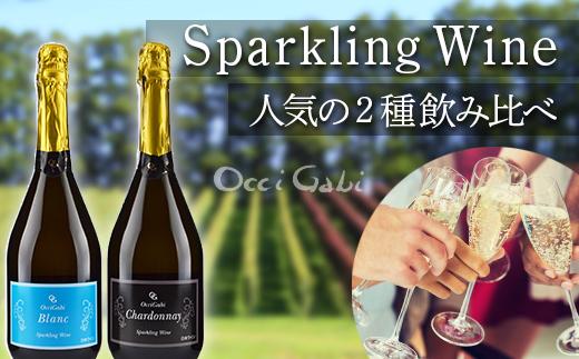 【OcciGabiWinery】スパークリングワイン☆人気の2種飲み比べセット2☆(オチガビブラン・シャルドネ)