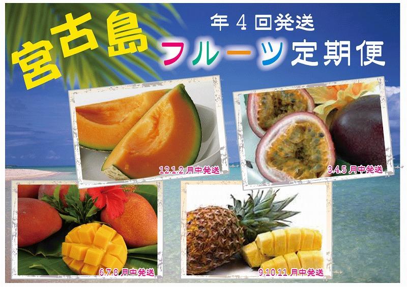 宮古島フルーツ定期便(4回お届け)