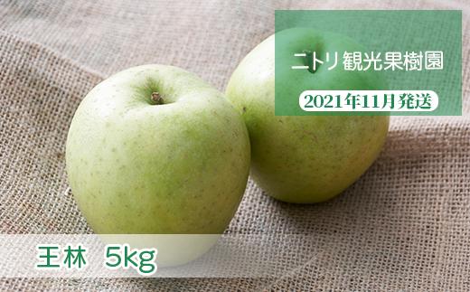 フルーツ王国余市産「王林」5kg【ニトリ観光果樹園】