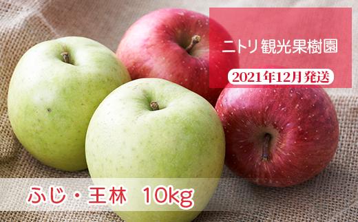 フルーツ王国余市産「ふじ・王林」ミックス10kg【ニトリ観光果樹園】