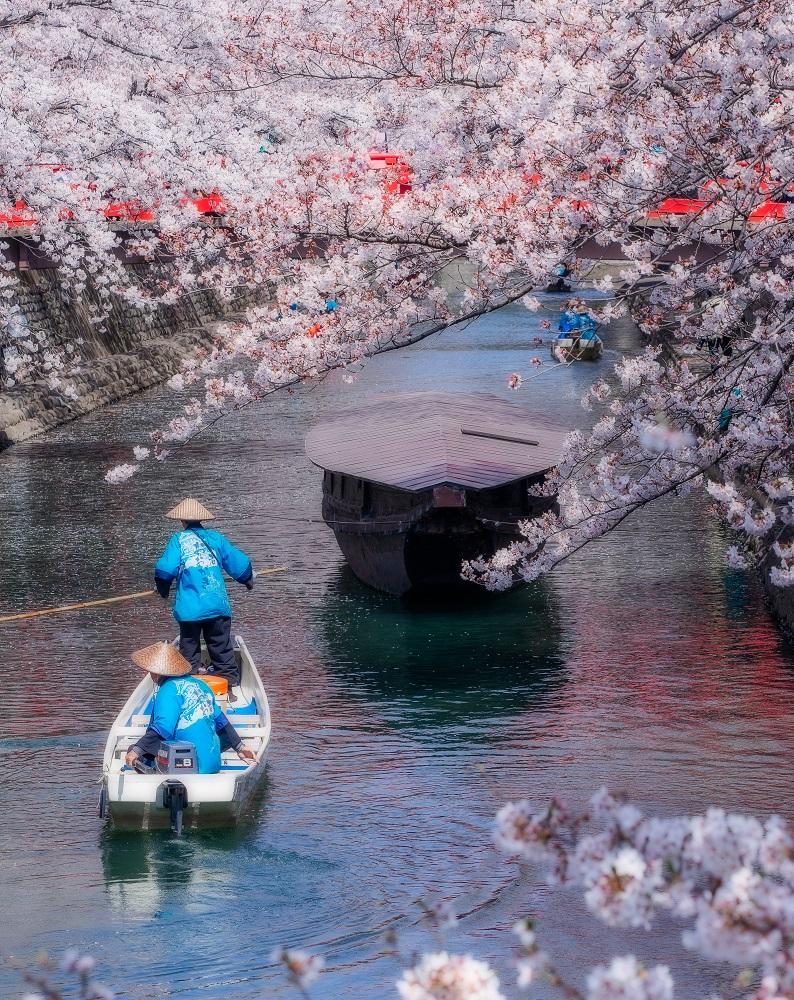 ◆水の都おおがき舟下り(西濃圏域)