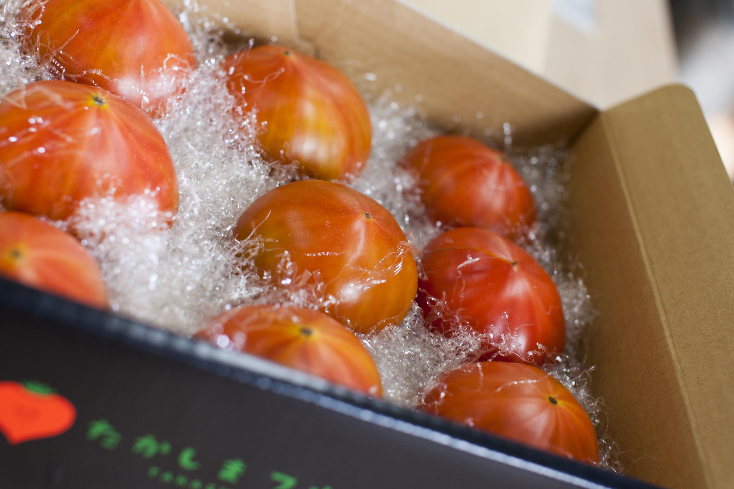 たかしまフルーティトマト 糖度10度以上 ハートの女王 1kg箱×1