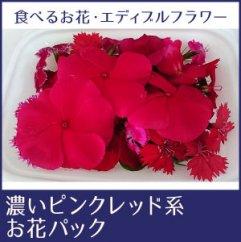 食べるお花・エディブルフラワー/濃いピンクレッド系約20輪/よしむら農園