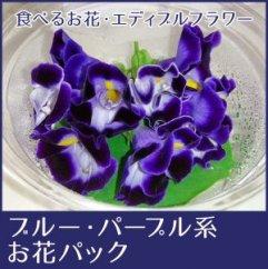 食べるお花・エディブルフラワー/ブルーパープル系約20輪/よしむら農園