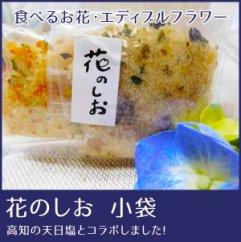 食べるお花・エディブルフラワー/花のしお小袋5種セット/よしむら農園