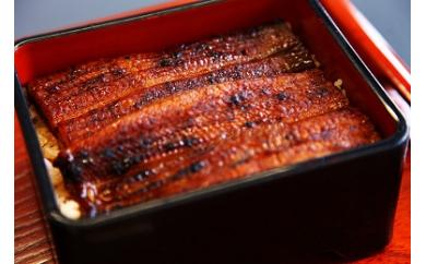 三年熟成醤油使用の炭火焼鰻蒲焼20尾【約160g×20】(たれ付き)