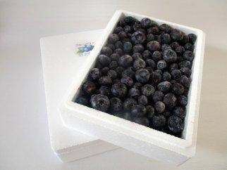 AG04 能登町産冷凍ブルーベリー