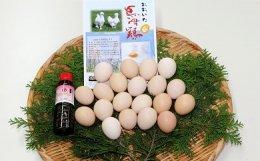 大分烏骨鶏の卵(20個)