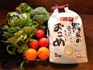 【有機JAS認定オーガニック】シェフの目線「大洲産のお米と季節のお野菜詰合せ」年間パスポート