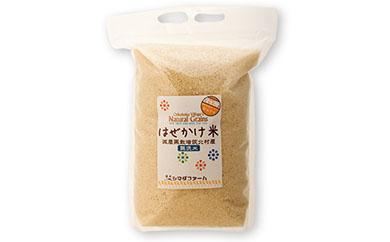 【数量限定】<坂北やさいBOX>はぜかけ米無洗米5kg