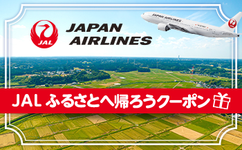 【南種子】JALふるさとへ帰ろうクーポン(4,000点分)