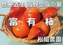 太陽の光をたっぷり浴びた松岡農園の富有柿赤秀2L14個