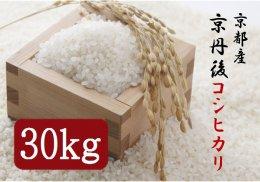 京都産 京丹後コシヒカリ 30kg【年間お届け】月1回×12カ月