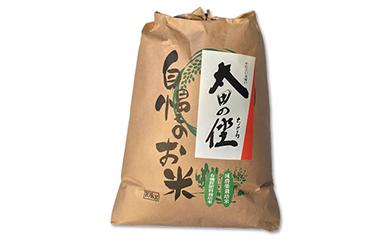 『太田のちから』減農薬栽培・有機質肥料栽培のコシヒカリ