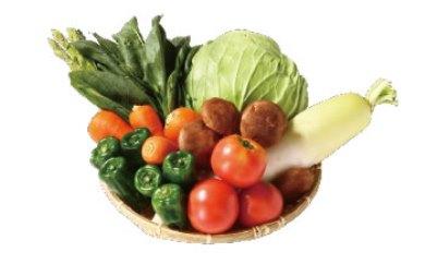 【5ヵ月間】定期便季節の野菜セット