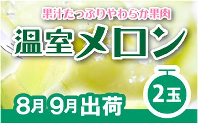 【数量限定】【高級】温室アールスメロン 大玉:2玉(計約3Kg) 紀州グルメ市場