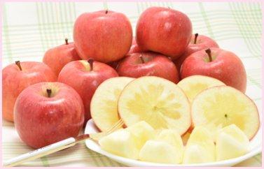 まぼろしのりんご 高徳(こうとく)贈答用1.7kg(7~13玉入り)