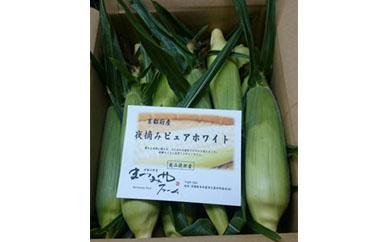 【数量限定500】京丹後産 フルーツトウモロコシ(黄)(白)セット