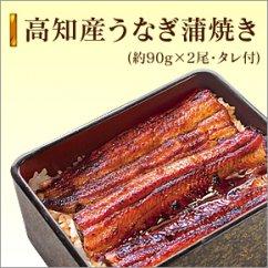 高知県産 うなぎ蒲焼き 約90g×2尾 タレ付き