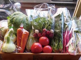 北九州季節の野菜詰合せ