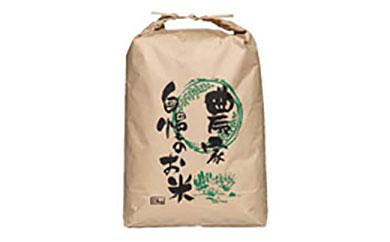 食材の宝庫 南あわじのお米(白米) 10kg