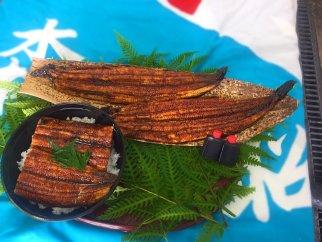 国産活鰻を地元の醤油で仕上げた絶品のうなぎ蒲焼(2尾)