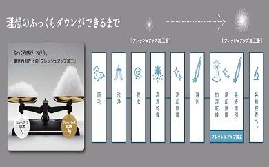 【東京西川】羽毛ふとん/ポーリッシュマザーホワイトグースダウン95%/D【P064-C】