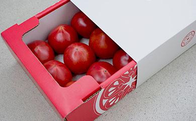 トロピカルトマトプレミアム