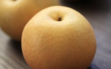 豊水梨小箱2㎏入り