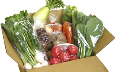 JA夢みなみファーマーズマーケット「り菜あん」季節のお野菜詰合せセット