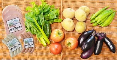 「ごちそう定期便」(加工品・野菜コース6ヶ月コース)
