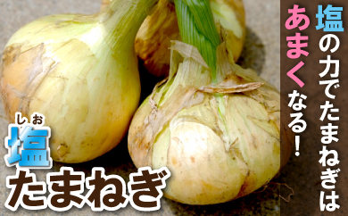 【受付終了】<限定>(大玉)柔らかくて甘い!「塩玉ねぎ(新玉ねぎ)」約4kg