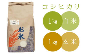椿さんのおいしいお米セット